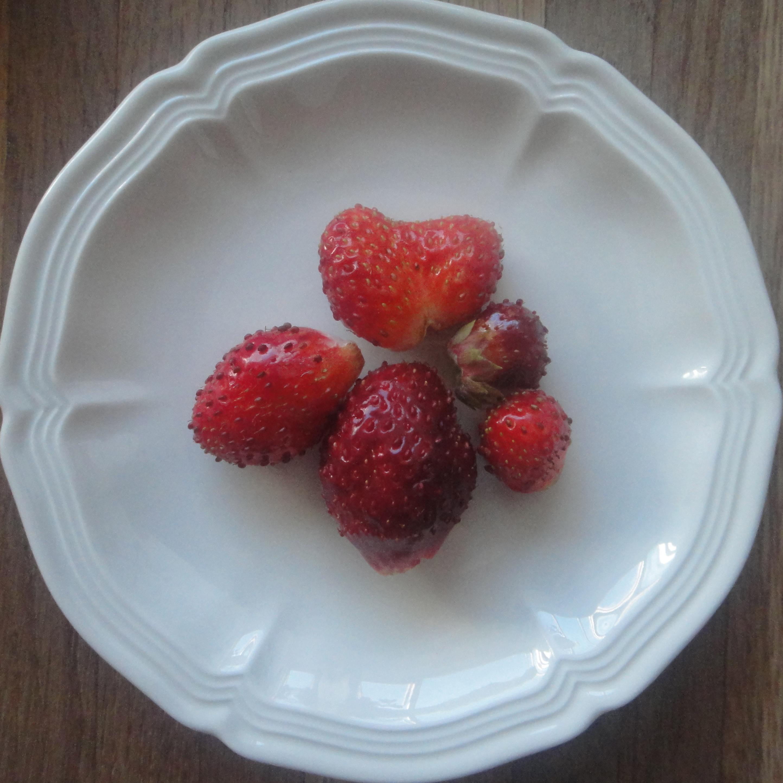 fresh strawberries / frische Erdbeeren