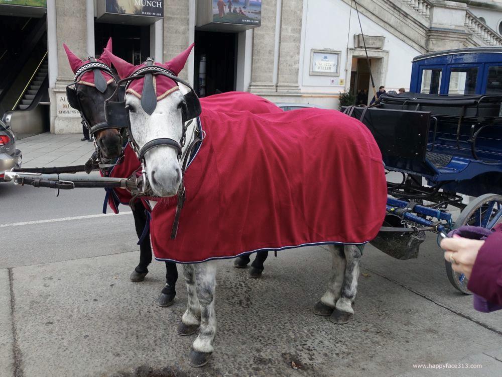 auch Wiener Pferde mögen rot / Viennese horses like red, too