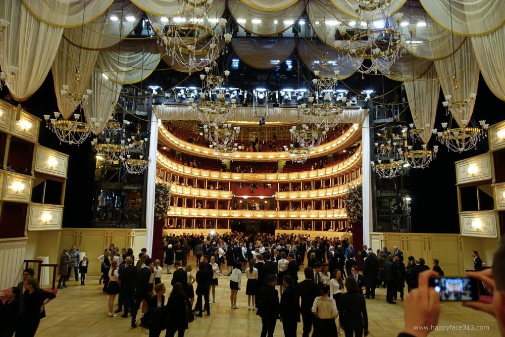 the entire ballroom / der ganze Ballsaal