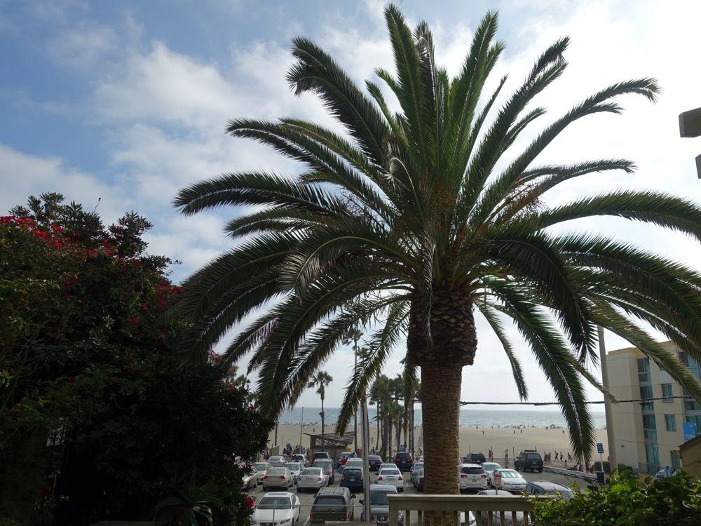 HappyFace313-Santa-Monica-Seview-