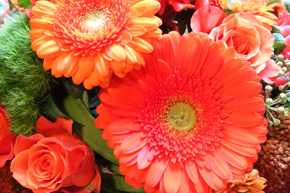 HappyFace313-share-your-world-flowers