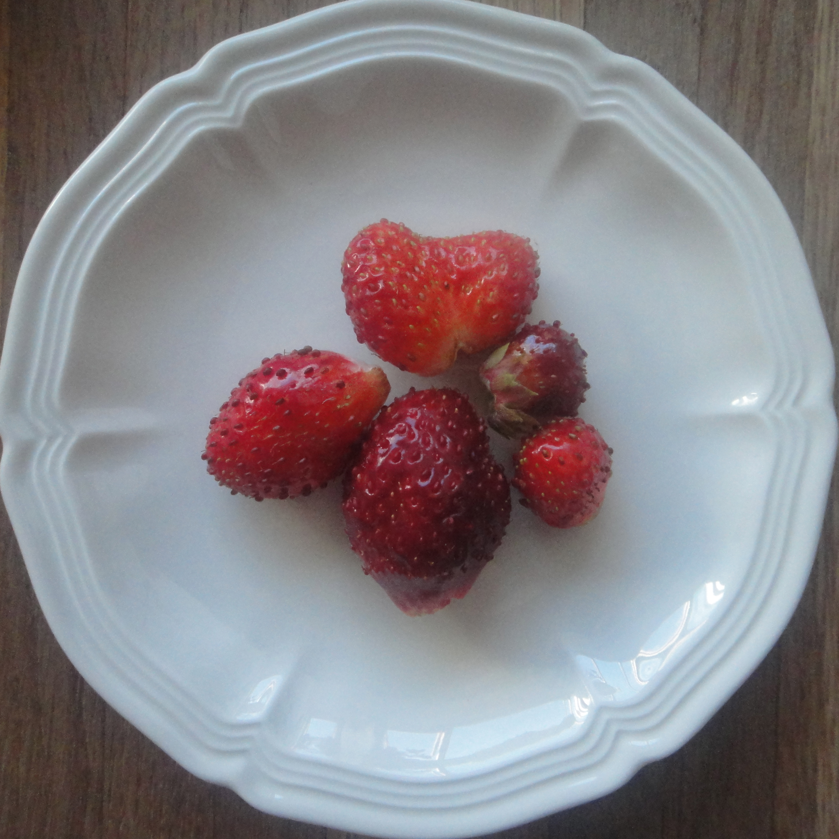 fresh strawberries / frische Erdbeeren