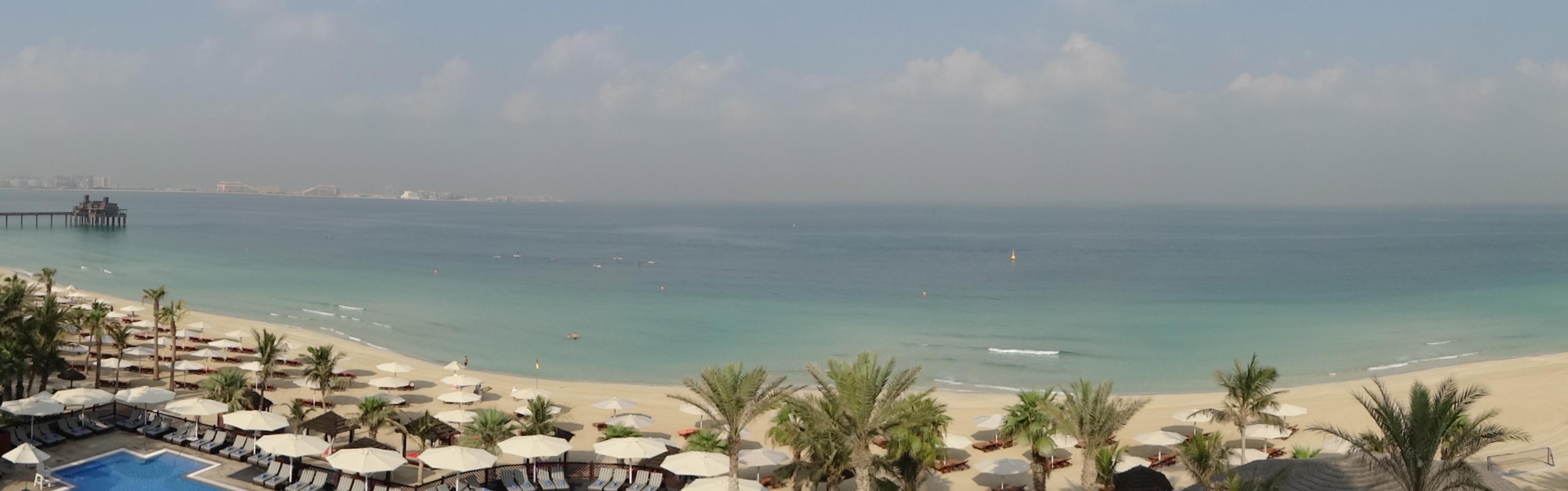 DSC01130 Dubai5 HappyFace313