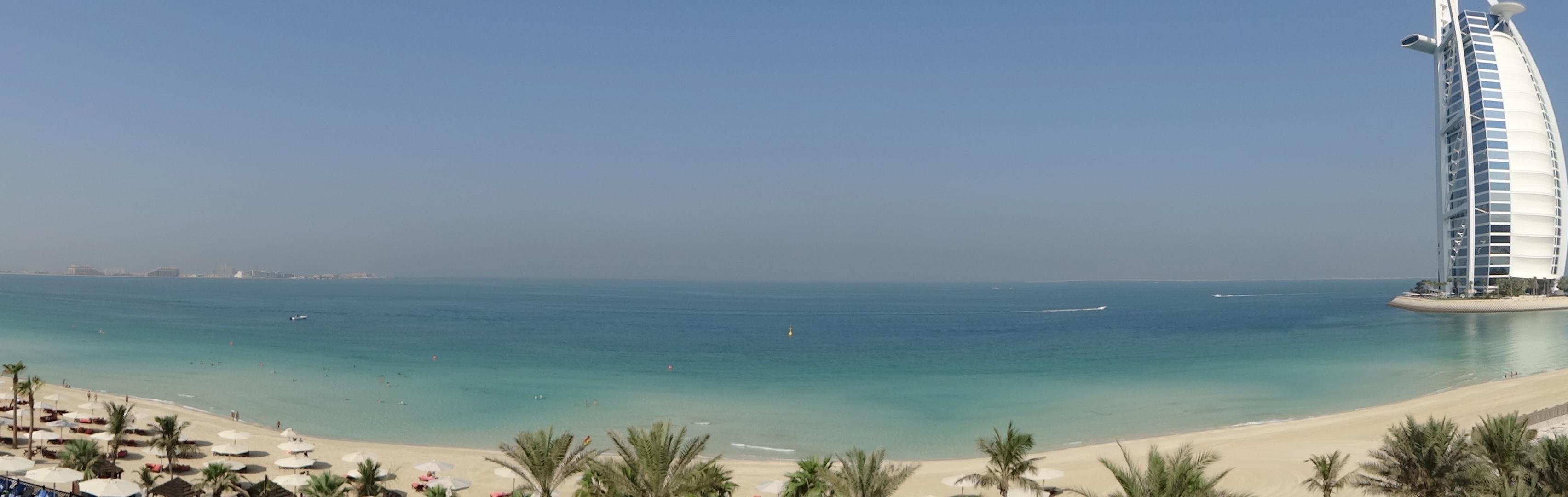 DSC01193 Dubai6 HappyFace313