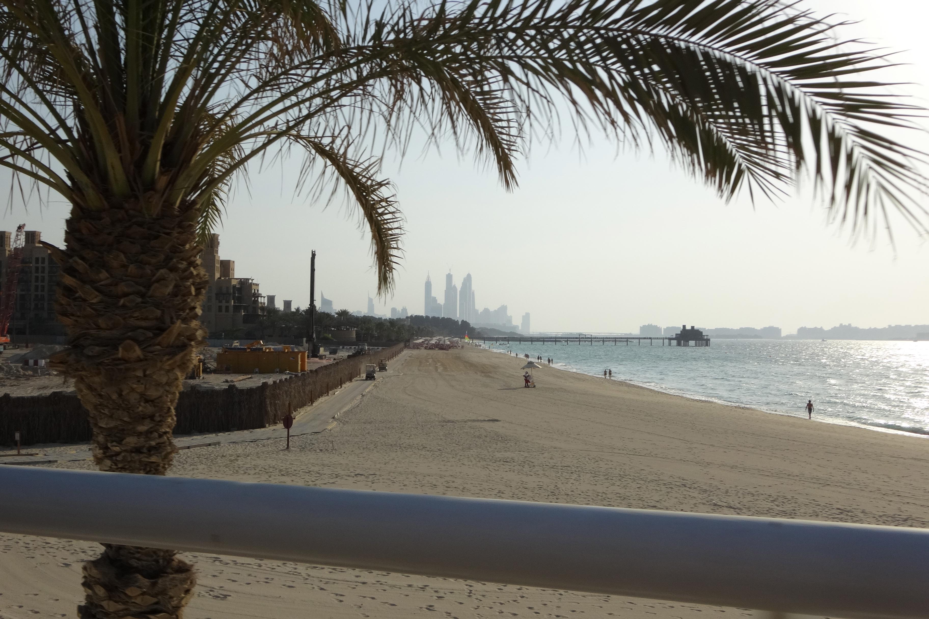 DSC01203 Dubai 22 HappyFace313