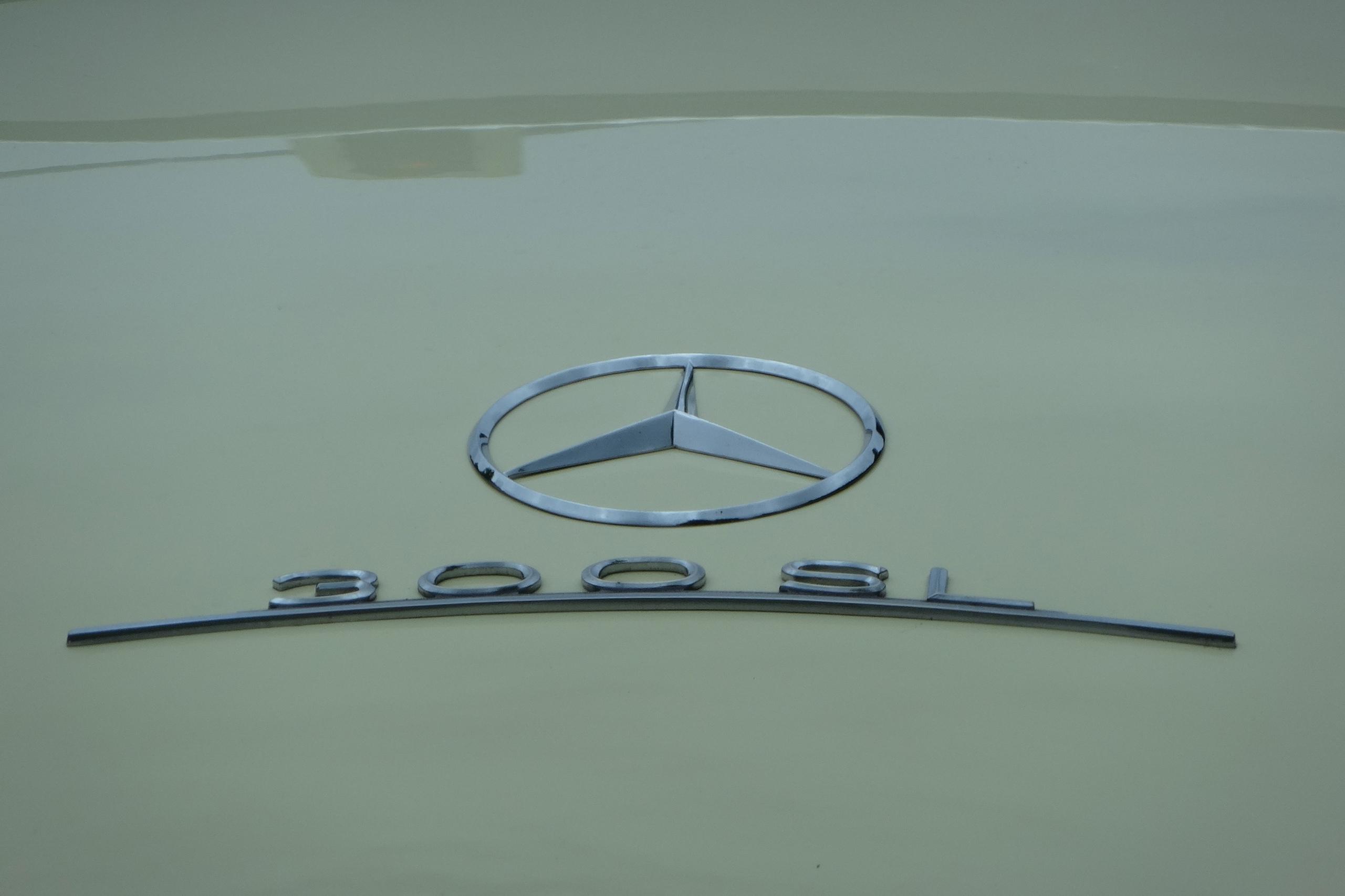 Mercedes 300 SL Treffen München 2014 63 HappyFace313