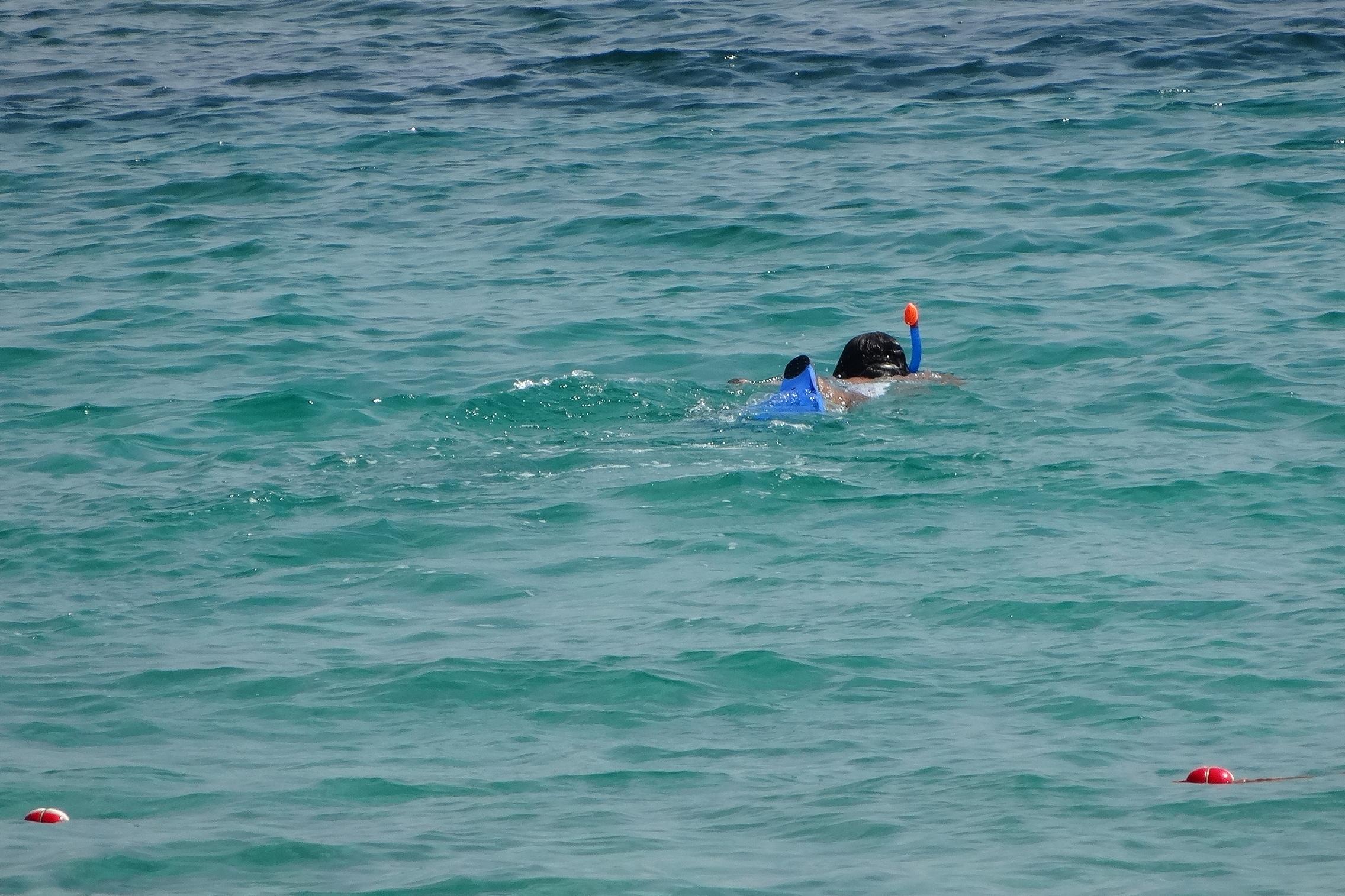 diving for the golf balls / Golfbälle tauchen