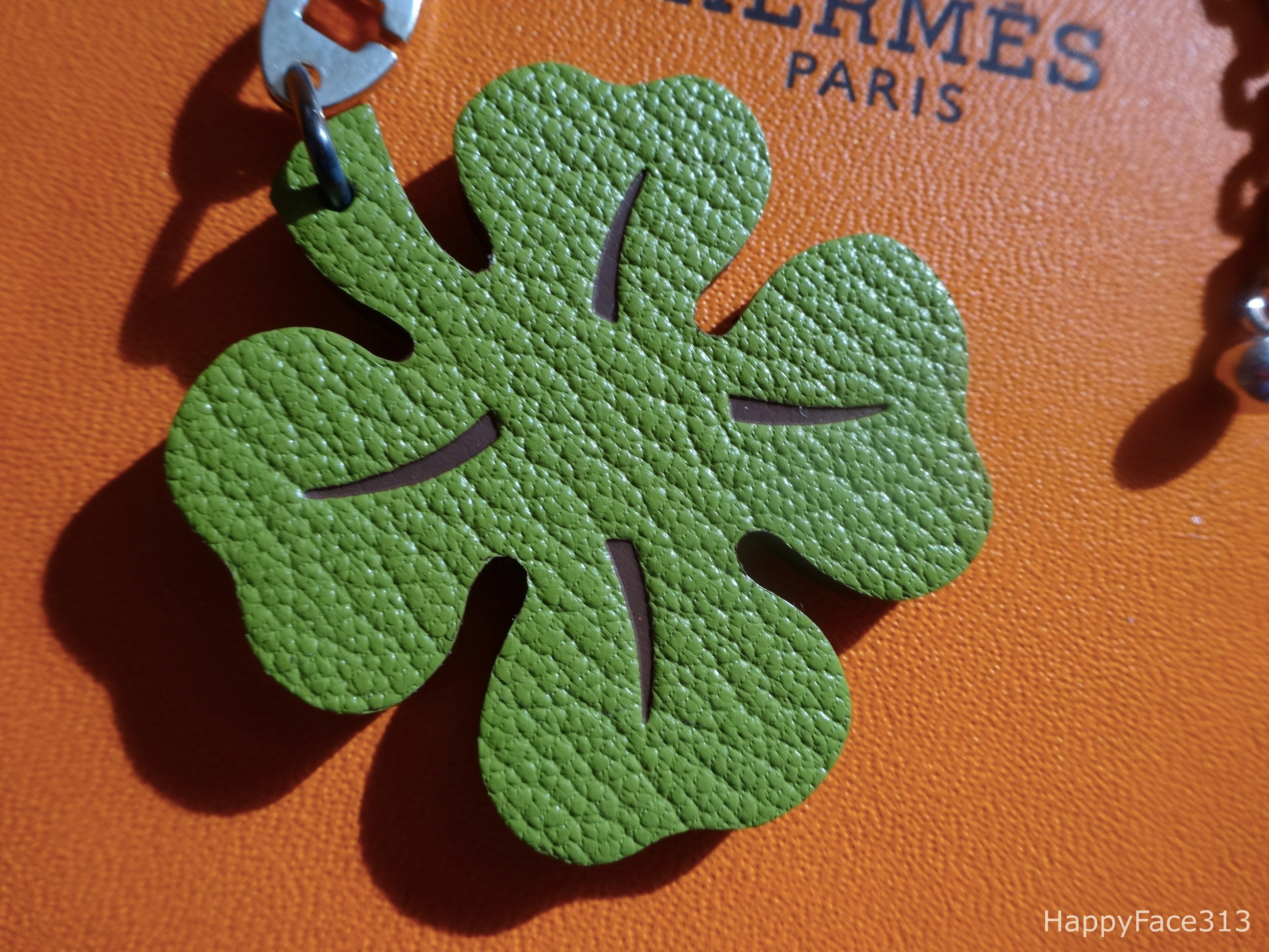 Of course Hermès Lucky Clover has a green side, too!