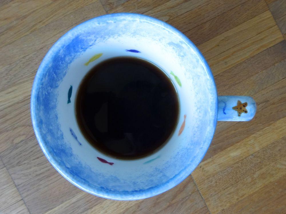 my fish need to swim - in coffee