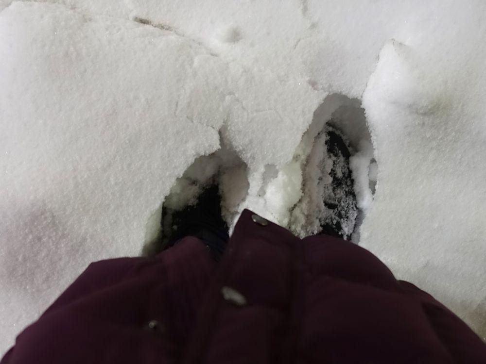 Schnee! snow!