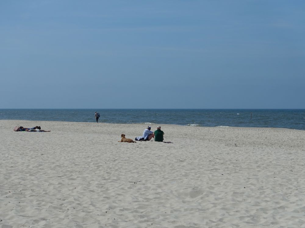 HappyFace313-day-trip-to-sylt-9