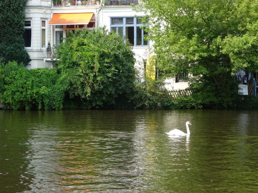HappyFace313-Hamburg-we-love-summer-1