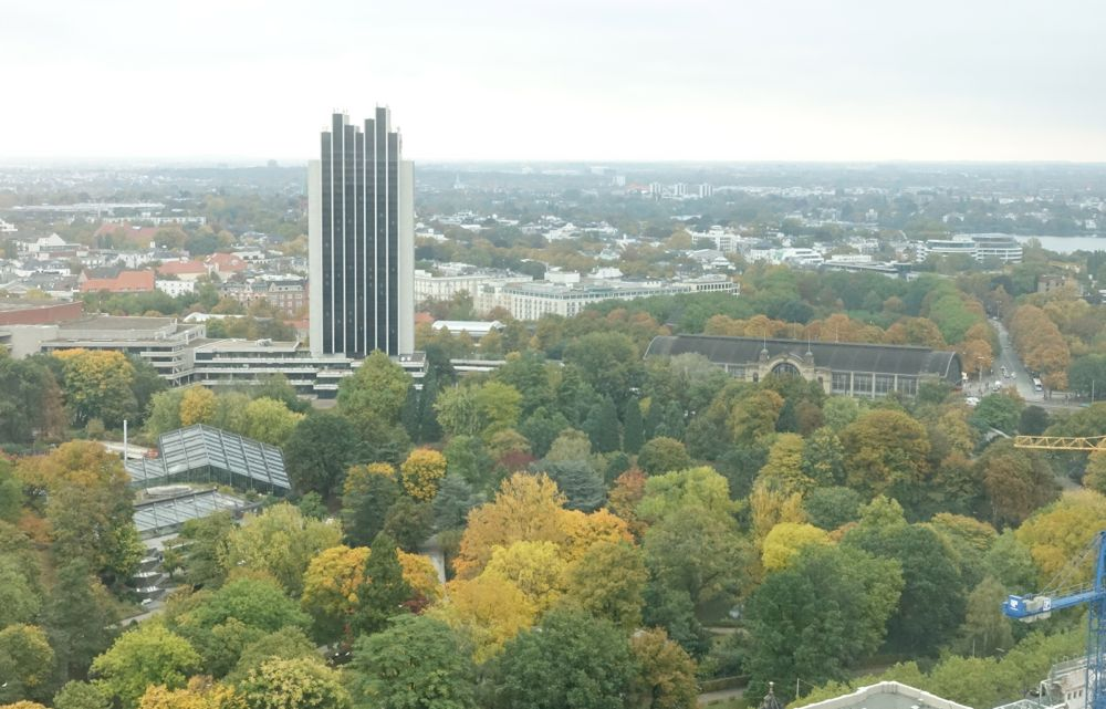 HappyFace313-goldener-Oktober-Hamburg