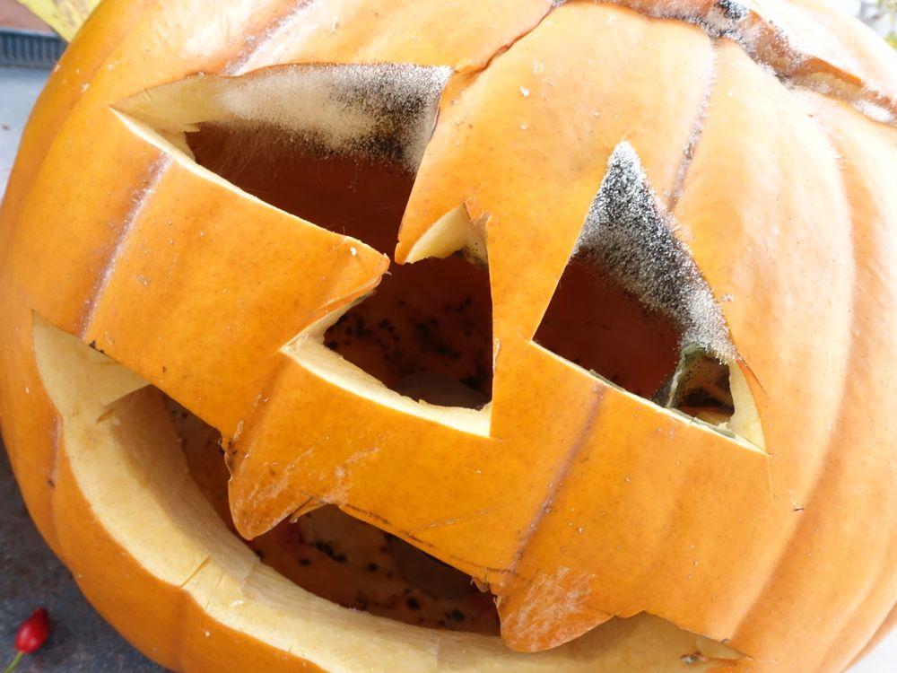 Spooky - Gammel-Augen / mildew eyes
