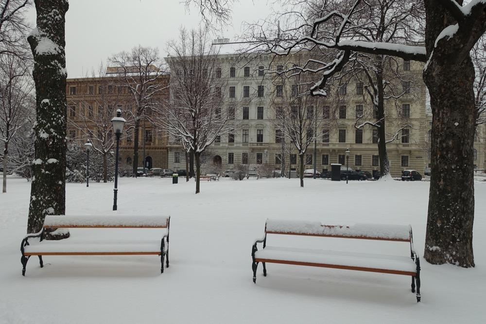 share-your-world-Schnee