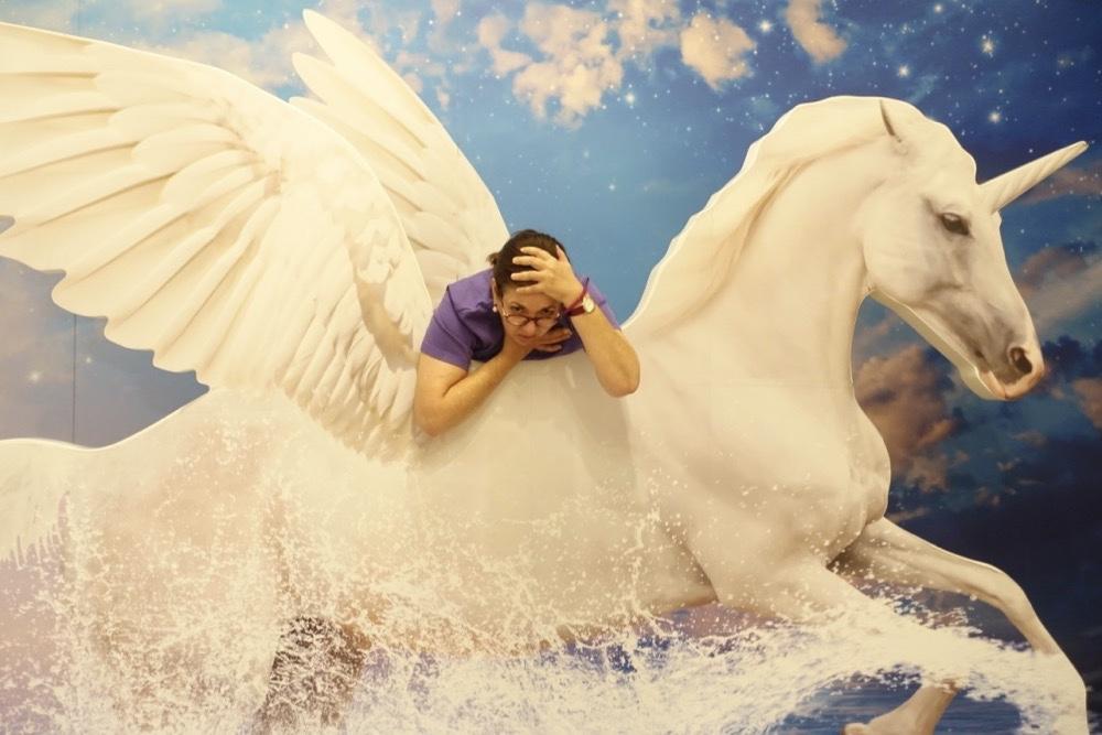 Happyhorse-unicorn-happyface313