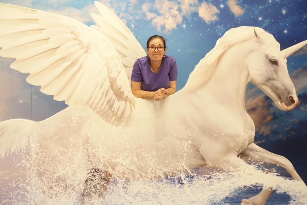 Hobbyhorse unicorn Happyface313
