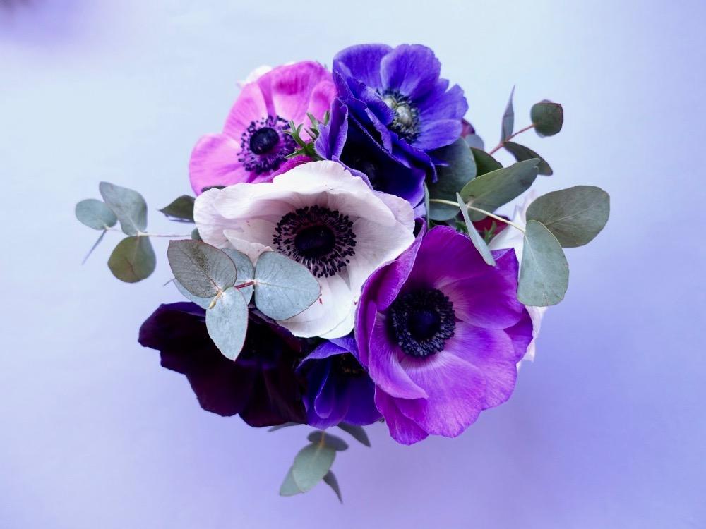 HappyFace313 Blumen