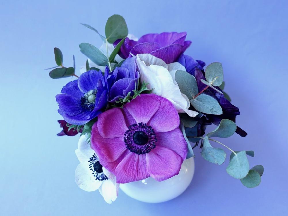 HappyFace313 flowers